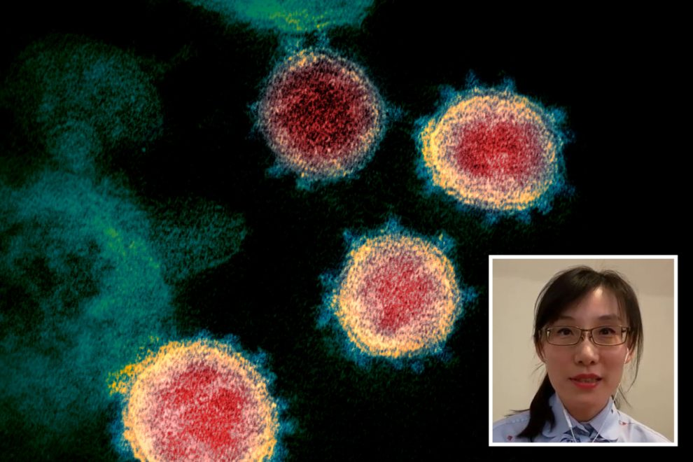 Chinese defector virologist PUBLISHES explosive 'proof' coronavirus is man-made after fleeing to America over 'cover-up'