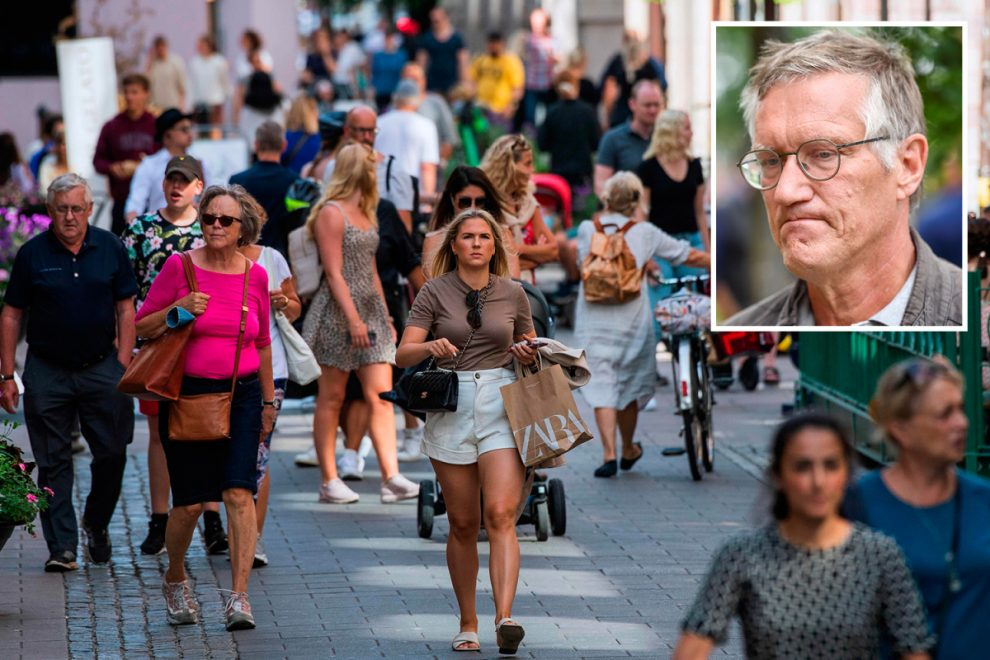 Sweden's epidemiologist says high coronavirus death rate could be down to large numbers of elderly surviving flu season