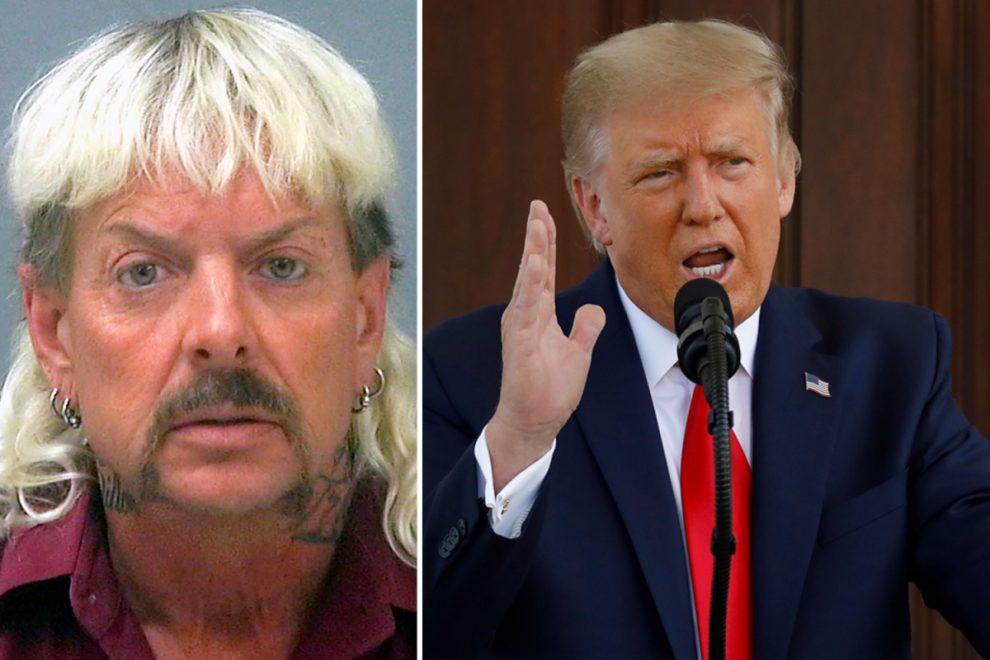 Tiger King's Joe Exotic's team to ask Donald Trump to pardon him