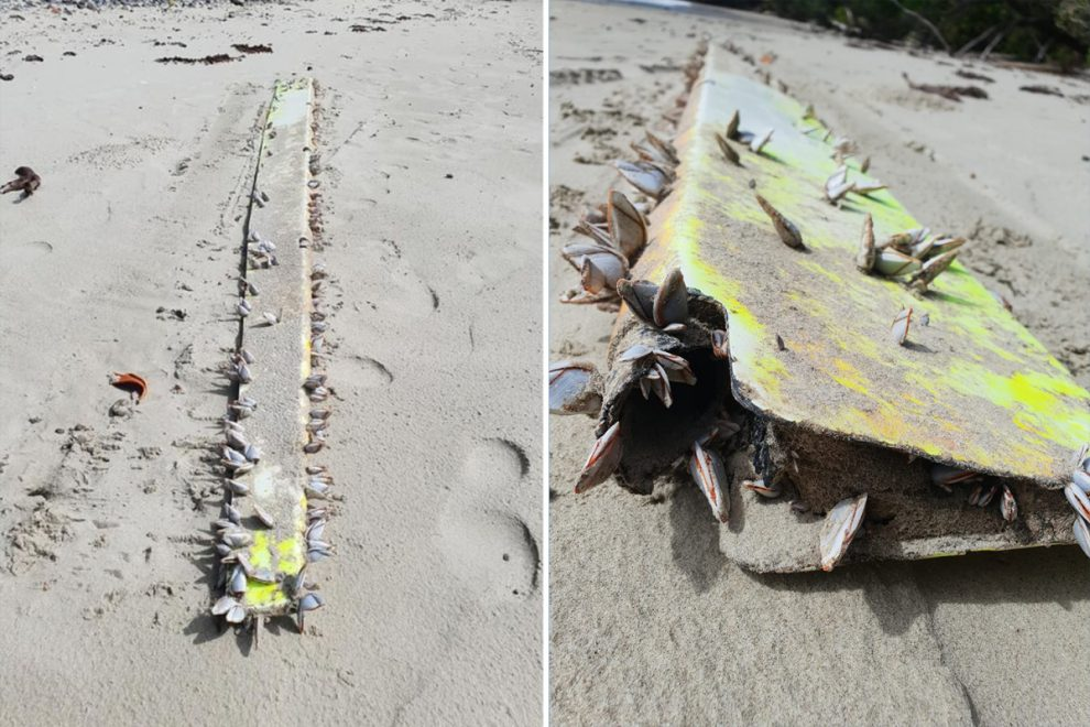 MH370 crash – Fresh hopes of finding missing plane as debris is found washed up on Australian beach