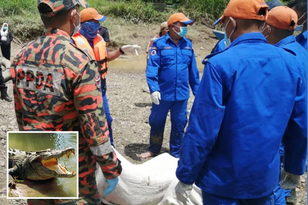 Man, 26, cries in terror for his brother as he is savaged to death by crocodile after going for swim in river