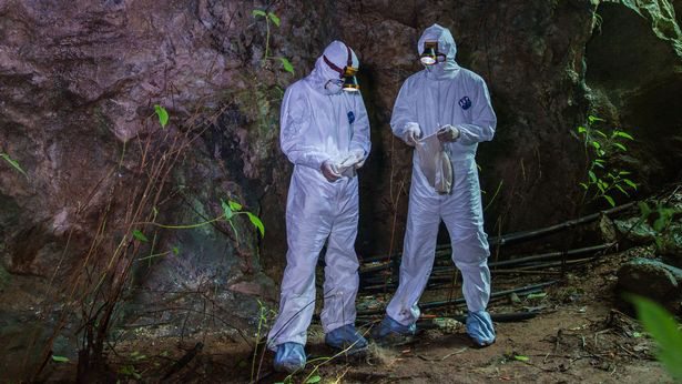 How mysterious bat infested cave in China where Covid-like virus killed 3 miners in 2012 may be key to Wuhan 'lab leak'