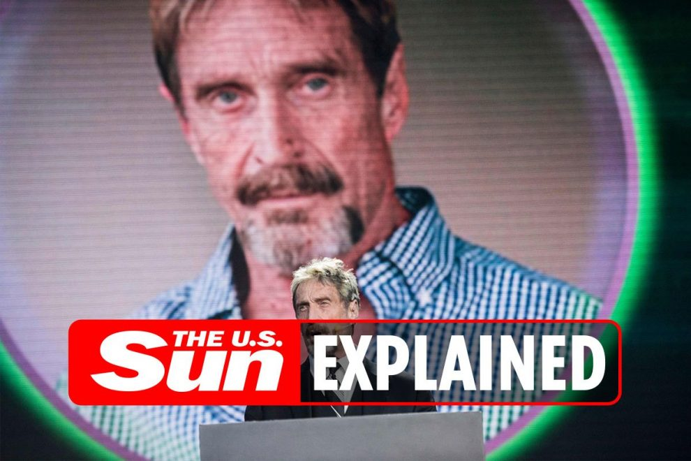 What is the John McAfee QAnon conspiracy theory?