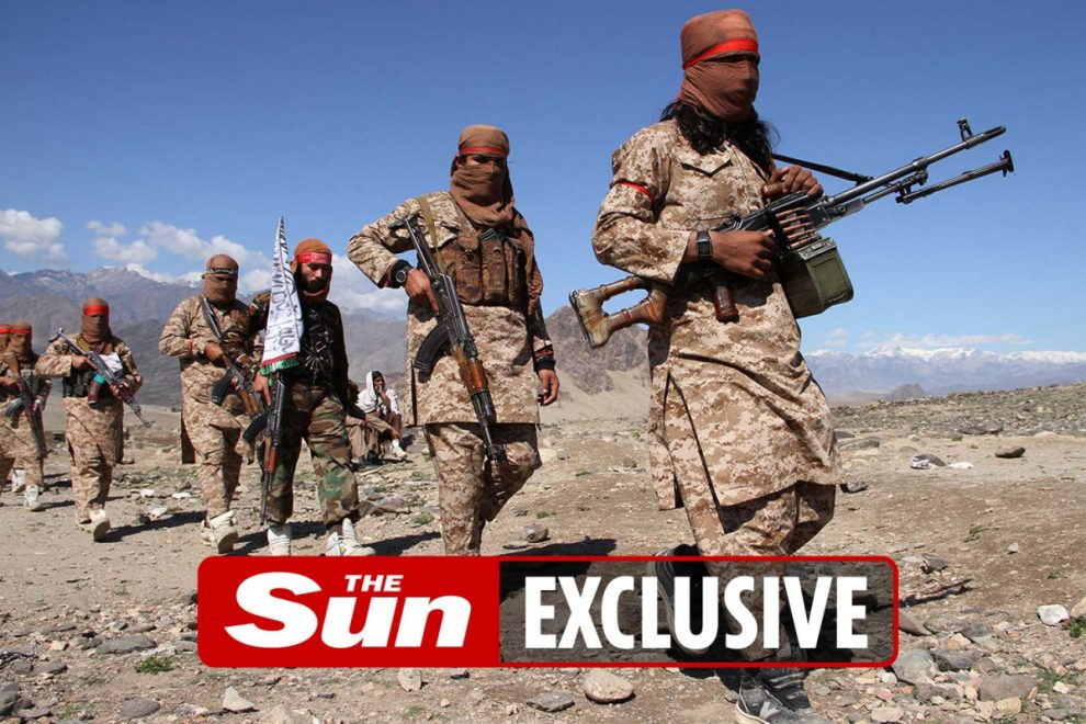 Taliban has captured a quarter of Afghanistan in bloody 3-week conflict as Nato forces leave